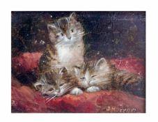 Johannes Josephus (Jan) Hovener (1936 Rotterdam)3 Kätzchen auf roter Wolldecke, Öl auf Holz, 9,8
