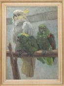 """HILDE BÖKLEN, Drei Papageien, Öl auf Platte, sign. u. dat. 1929Unten rechts signiert """"H-Böklen-1929"""""""
