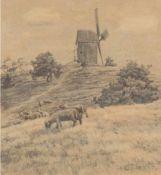 """Malchin, Carl (1838 Kröpelin-1923 Schwerin) """"Darßer Mühle mit weidenden Schafen"""",Bleistiftzeichnung,"""