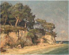"""""""Steilküste"""", Öl/Lw.,unleserlich sign. u.l., 50x60 cm"""
