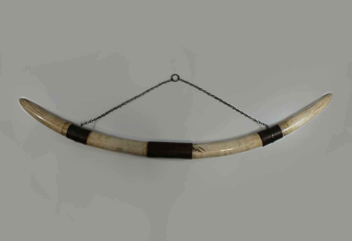Lot 46 - Elfenbein-Stoßzähne mit Metallapplikation, Cites-Bescheinigung liegt vor, Gewicht 3,9 kg, L.: 71 und