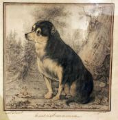 """Cosnard. Porträt eines Hundes. Portrait of a dog. """"Présenté à bonne maman."""" Zeichnung um 1820,"""
