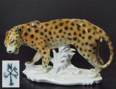 Stehender Leopard auf Grassockel.Stehender Leopard auf Grassockel. ENS, Rudolstadt/Thüringen.