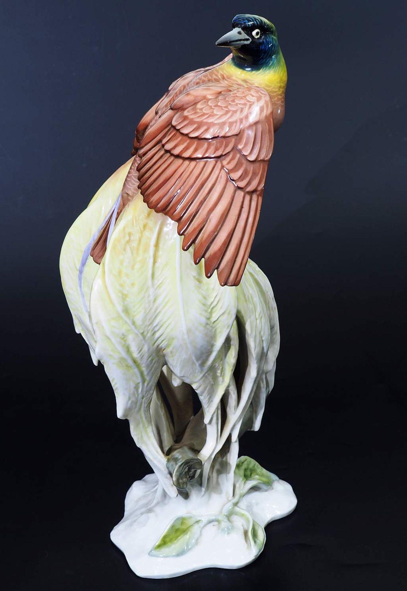 """Große Tierplastik """"Paradiesvogel"""". Große Tierplastik """"Paradiesvogel"""". ROSENTHAL Kunstabteilung Selb, - Bild 3 aus 8"""