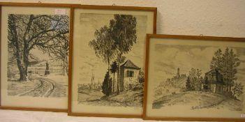 Bamberg: Vier Ansichten. Lithografien von Waltenberger, ca. 22 x 30cm. Rahmen mit Glas.