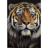 Lot 18 - Tiger Pride II - An original Oil by Richard Symonds Richard's passion and commitment for wildlife