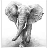 Lot 23 - The Charge This wonderful hand embellished picture by Gary Hodges shows an African Elephant in