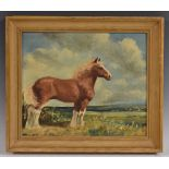 English School (20th century) Shire Horse in a Landscape indistinctly signed, oil on board,
