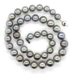 Lot 37 - Tahitian pearl necklace