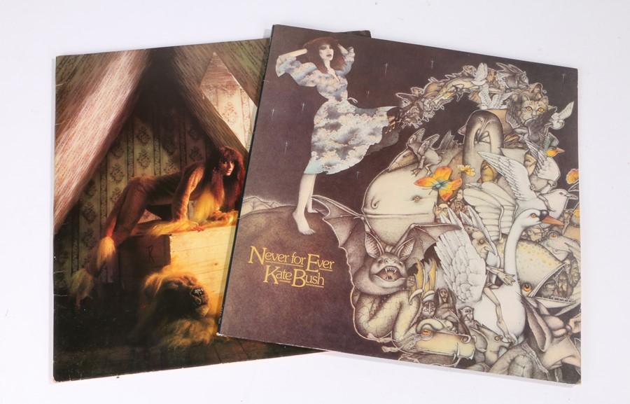 Lot 45 - 2x Kate Bush LPs - Lionheart, Never for Ever, gate fold sleeve