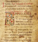Bifolium from a Lectionary, with a white vine initial, in Latin, decorated manuscript on parchment