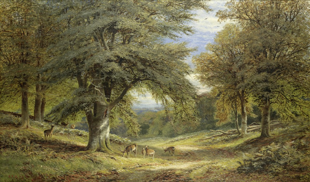 Lot 48 - Alfred Augustus Glendening (British, 1840-1921) Deer on a shaded woodland path