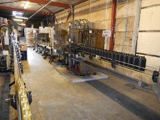Rationator 6 head 5 litre filling line comprising: