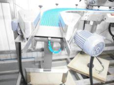 Transfer Conveyor with Laetus 6012 Pharma code rea