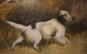 """J.Dunn 20th Century """"Mixed Breed"""" Oil on Board, Signed and dated 72 to lower right, 50cm x 74.5cm,"""