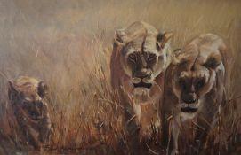 "Paul Richardson ""Stalking Lions"" Oil on Canvas, signed lower left, 49cm x 74cm, framed"