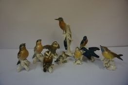 A Group of Continental Porcelain Figures of Birds by Carl Ens, to include owls, largest 24cm high,