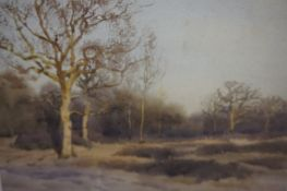 "Tom Scott R.S.A (Scottish 1850-1934) ""Edge of the Wood, The Haining Selkirk"" Watercolour, signed and"
