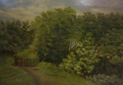 "B Davis (British) ""Country Path"" Oil on Canvas, signed and dated 1904 to lower left, 24cm x 34."