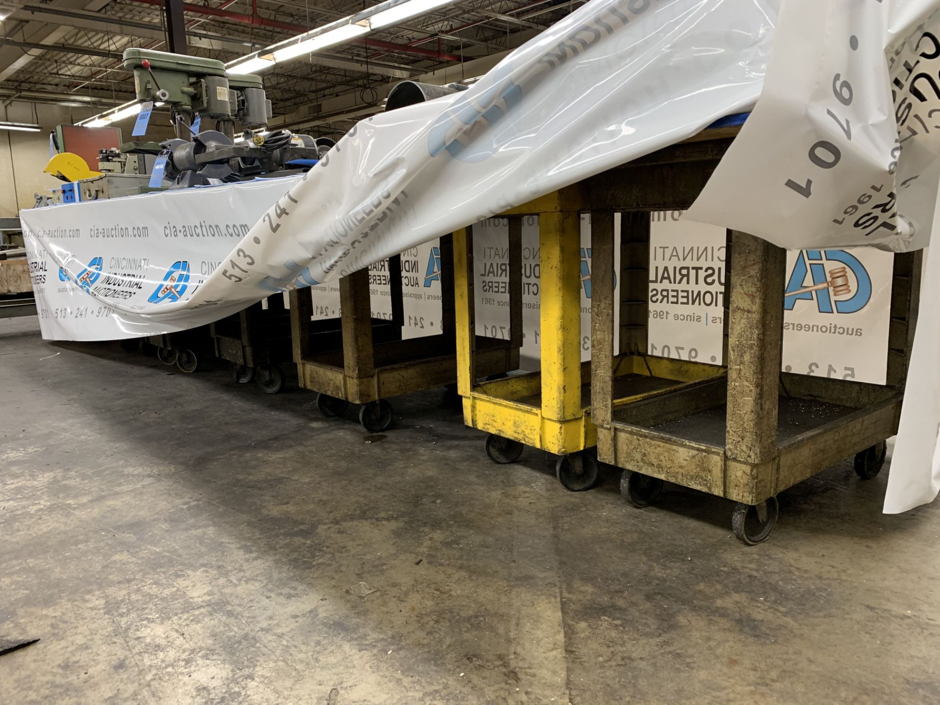 Lot 25 - RUBBERMAID UTILITY CARTS **DELAY REMOVAL - PICK UP 3/29/2019** **NO PLYWOOD - PROPERTY OF AUCTION