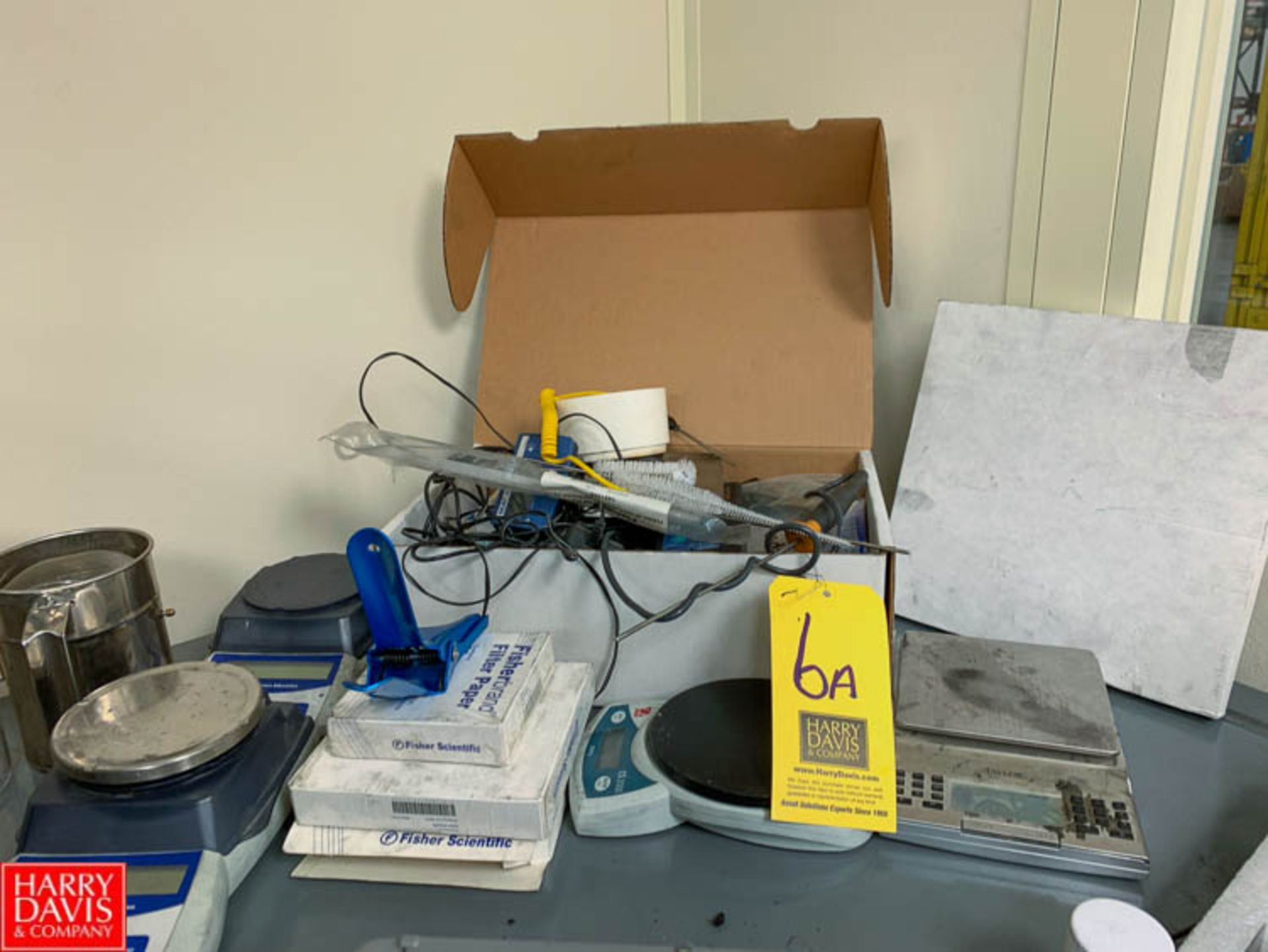Lot 6a - Assorted Lab Equipment with (2) Fisher Scales, Weights, Probes and More Rigging Fee: 100