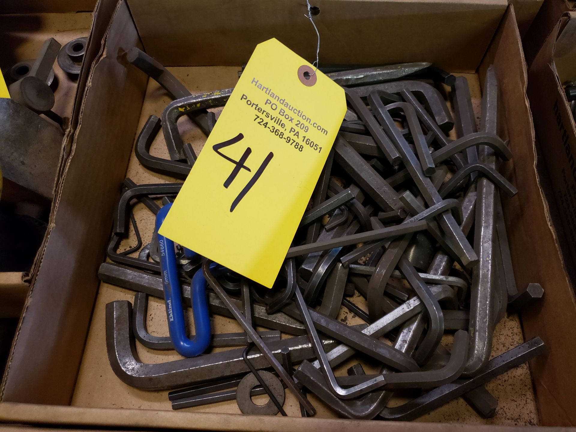Lot 41 - ALLEN WRENCHES