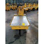 WESLEY INT. PACK MULE ELECTRIC CARTS, MODEL SC-775- 6CA, STAND UP DRIVE, FORWARD REVERSE, BACK REST,
