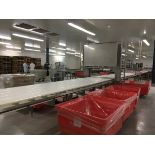 Lot 1A - 2013 Intralox Conveyor, Stainless Steel Frame, 48in Wide Belt, 48Ft Ov | Insp by Appt | Rig Fee: 500