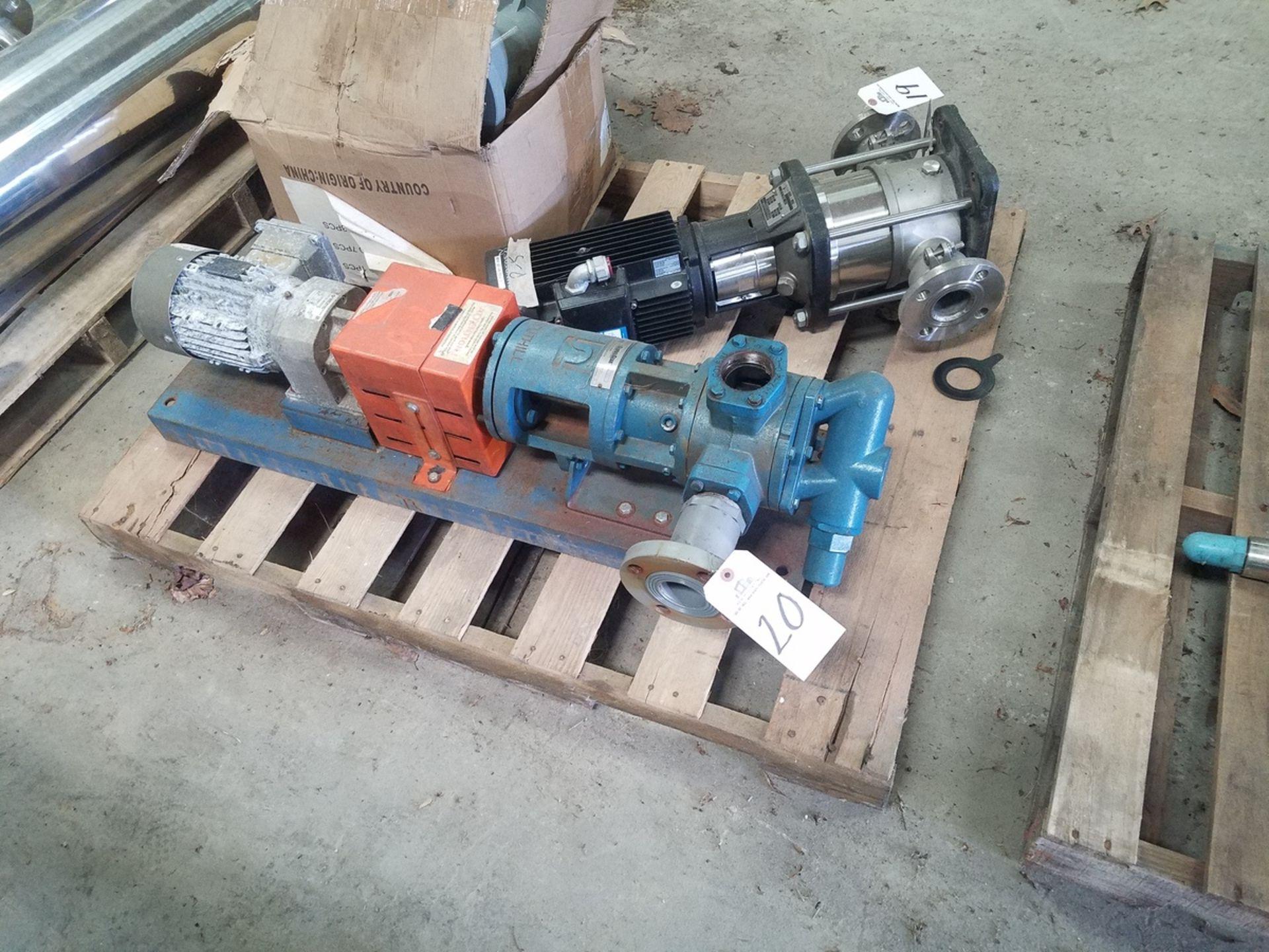 Global Gear Oil Transfer Pump, 5 HP | Rig Fee: $50