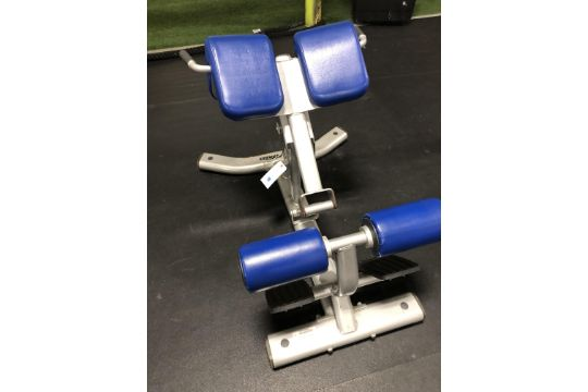 Life Fitness #SBE-H102-101 Back Extension