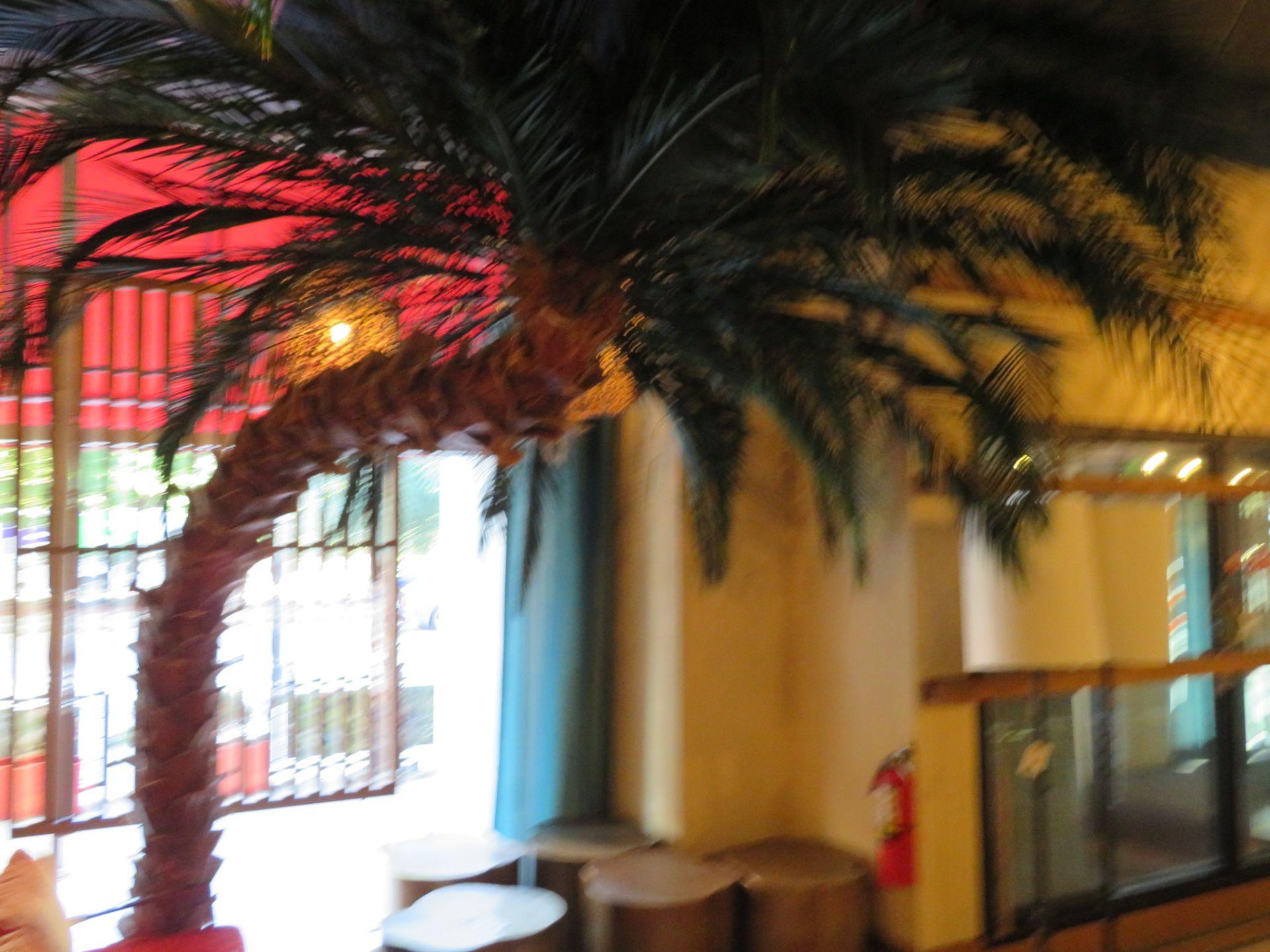 Lot 65 - (Lot) Artificial Palm Trees Inside & Outside