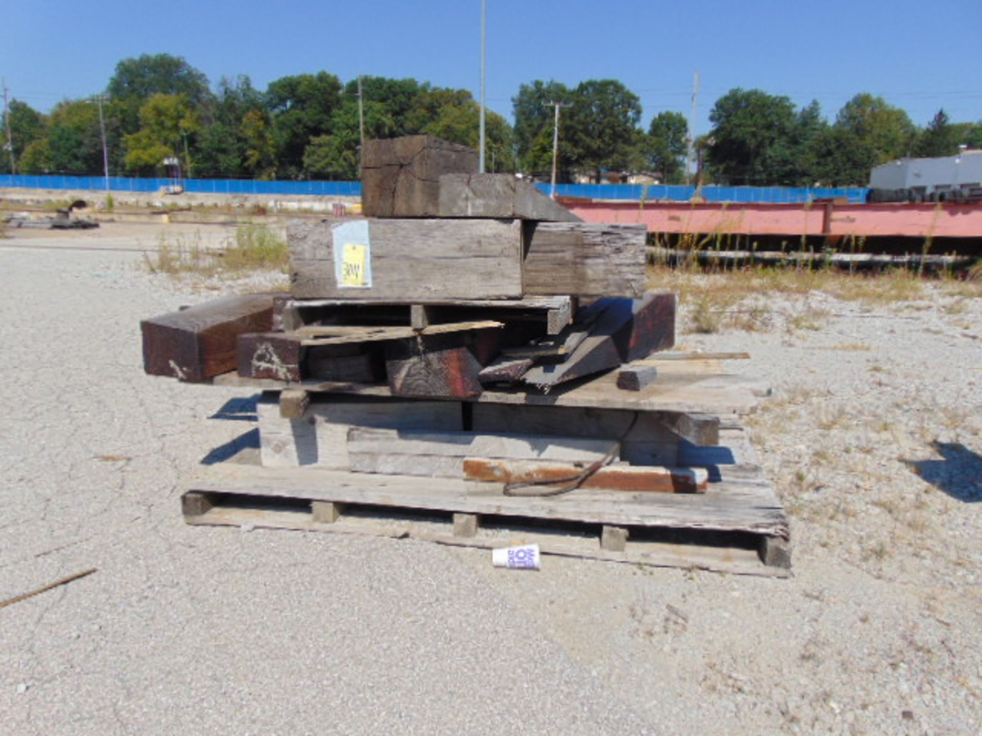 "Lot 3011 - LOT OF TIMBERS, 12"" X 12"", assorted (in seven rows)"