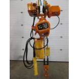 RW 1 Ton Electric chain hoist with power trolley and 8 button pendant controller - 220V - 20 foot