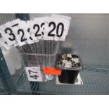 Lot 45 - Lot Of Table Numbers & SS Numbers