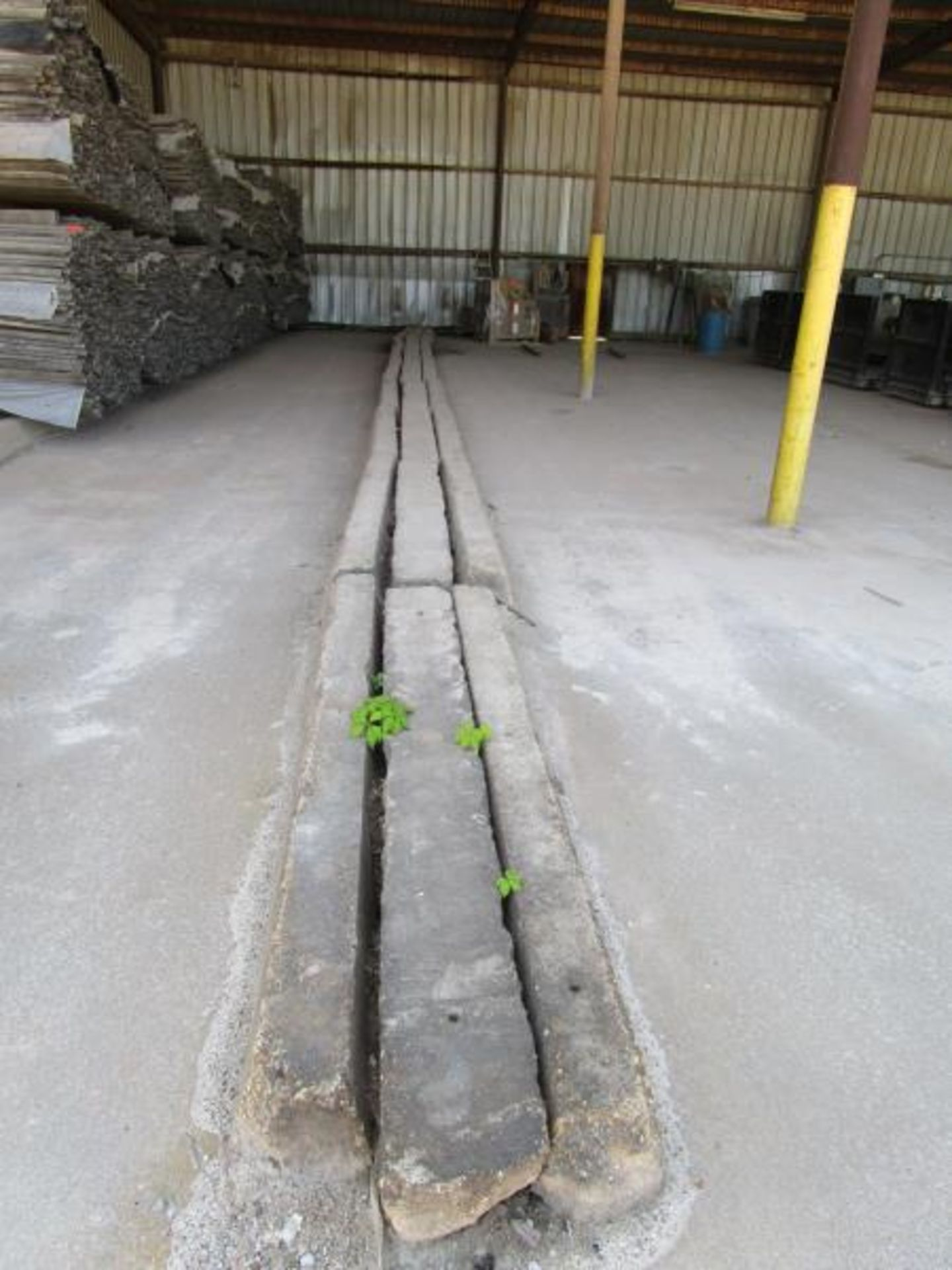 Lot 55 - 27 cement curbs