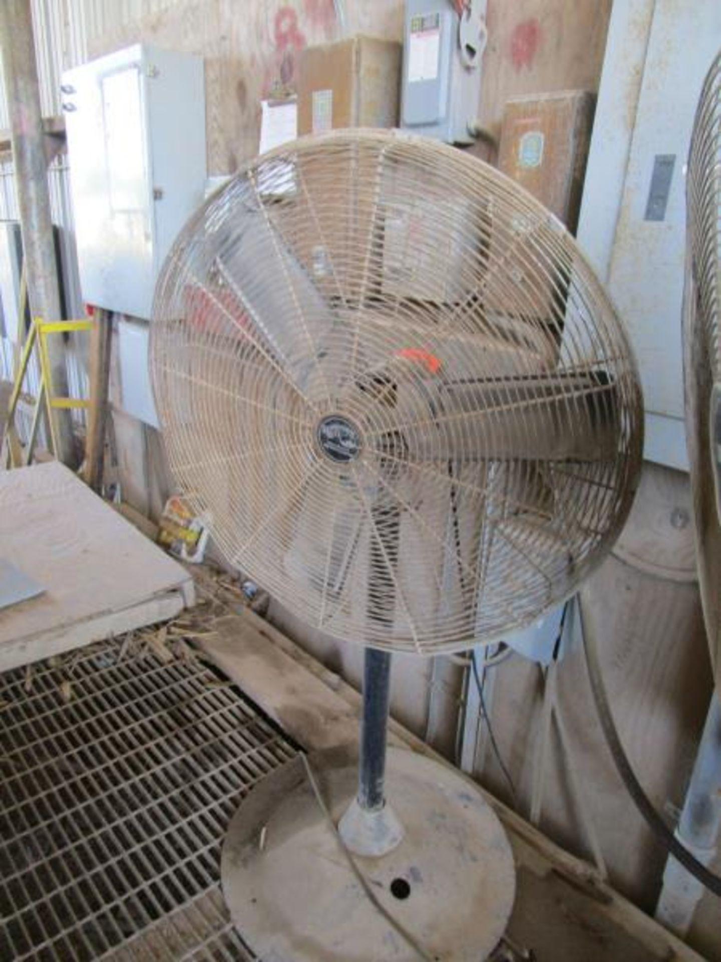 Lot 20 - Hampton Bay Pedestal Fan