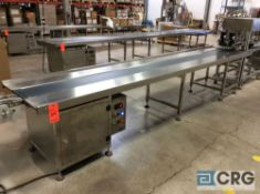 NEW 2018 Chasing SDH-4(0.75+4) 13 foot stainless steel conveyor table, 250mm/9 7/8 inch belt width