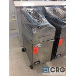 American Range stainless steel portable 2 basket frialator, propane converted