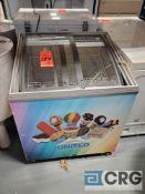 Portable 3 foot reach in ice cream freezer