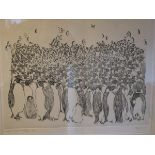 A John Daffern copper plate etching and engraving, Emperor Penguins-Huddling, 9/50, signed and dated