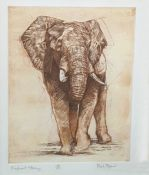 """After Mark Spain Limited edition colour print """"Elephant Study"""", 7/150, signed in pencil lower right"""