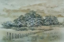Trudi Finch (20th Century) Watercolour 'A Green Day' signed lower right, bears label verso 25.5 x 35