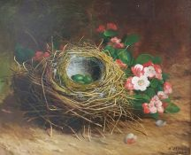 Abel Hold (1815-1891) Oil on board Study of birds' nests with eggs and pink blossom, signed and