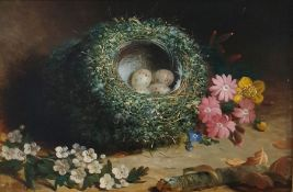 Abel Hold (1815-1891) Oil on board Study of bird's nest with speckled eggs, white blossom and