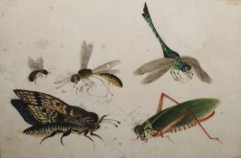Pair chinese watercolours on rice paper - insects and a junk ( 2)