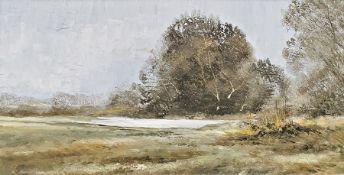 Pamela Cook Oil on board Country landscape, signed lower left, 29 x 59cm