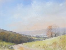 Paul Hardy  Pastel  Dartmoor view, signed lower left, 34cm x 42cm
