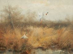 Hansing, oil on canvas, ducks in light amongst reeds, signed indistinctly 29.5 x 39cm