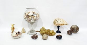 Large exotic shell on ebonised turned wood stand, large quantity of shellsin glass pedestal bowl,