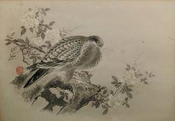 Bird studies Pen and wash Chinese characters, vari